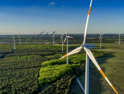 Brandenburgia stawia na rozwój energii odnawialnej